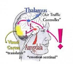 De controle kwijt over handelen en emoties, stress, beheersen herinneringen, angst, vlucht vecht bevries, controle, zelfcoaching, leidinggeven, coachen conflict