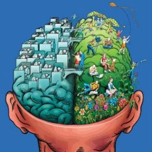 Dat eigenwijze verwarrende brein
