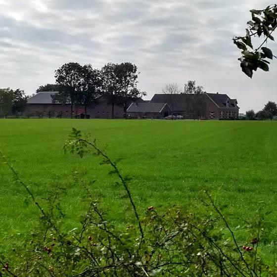 De boerderij vanaf de overkant
