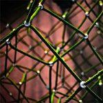 7 slimme netwerkregels