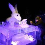 Vrieskou tegen de winterblues - IJskonijn