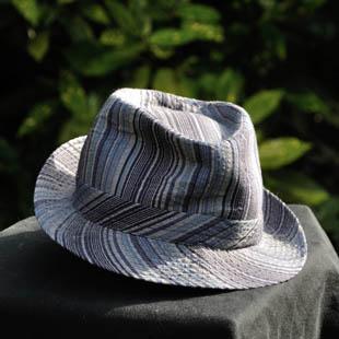De blauwe hoed - de dirigent