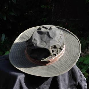 De groene hoed - de energieke vrijdenker